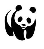 rozpoznawalnosc-logo
